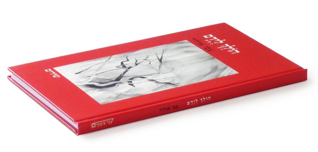דבי אופקים – כתיבה, עריכה, הפקה